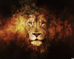 4K Lion Desktop Wallpapers - Top Free ...