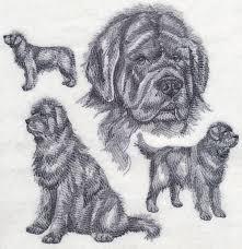 Newfoundland Embroidery Designs Newfoundland Embroidered Sweatshirt Shirt Products