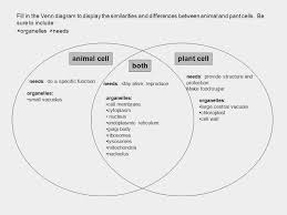 Venn Diagram Plants Venn Diagram Template Circular Flow Diagram