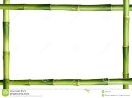 Green Bamboo Stick Frame Stock Image Image Of Plant 13631001