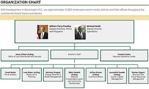 Trump Administration Org Chart Interior Advocate For Federal Land Sales Ascends To Top At