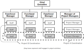Org Chart Software For Large Companies The 4 Types Of Project Organizational Structure