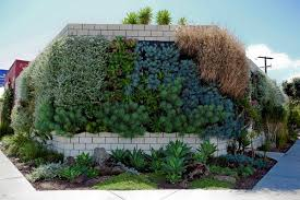 Small Picture Vertical Gardens Slide Show Gallery Garden Design