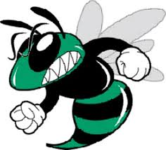 Image result for Lady Hornets images