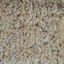 home decorators collection carpet sample galore ii color west