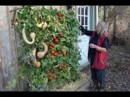 vertical gardening vegetables ideas