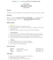Child Care Resume Examples Resume Work History Format Child Care