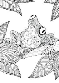 Free Printable Coloring Pages Animals Detailed Animal Coloring Pages