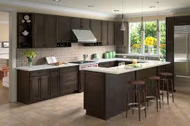 Merillat Kitchen Cabinets Espresso Kitchen Cabinets For Amazing Kitchen Designs Kitchen New
