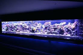 r aquarium lighting led light reef aquarium led reef aquarium lighting reviews
