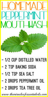 peppermint essential oil mouth wash recipe