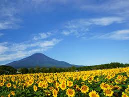 富士山夏1無料写真素材ならフリー素材タウン