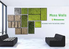 wall pictures for office. Moss Wall Panel Brochure Cover With Pricing Pictures For Office I