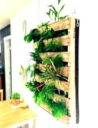 living wall planter herb wall planter indoor living wall planter indoor living wall herb garden indoor wall planter best living wall planter herb wall
