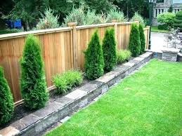 privacy wall outdoor outdoor privacy wall ideas backyard wall ideas best backyard fences ideas on fencing privacy wall outdoor