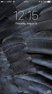 black feather wallpaper [750x1334 ...