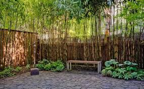 Contemporary Design Bamboo Privacy Exquisite 70 Garden Design Ideas How To  Create A Picturesque Landscape