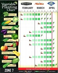 best times to plant vegetables best time to plant vegetable garden vegetable planting chart for zone