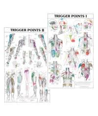 Kent Trigger Point Charts Trigger Point Chart