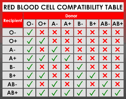 Blood Cell Compatibility Table Coolguides