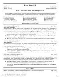 Sales Consultant Resume Sample Resume Idea