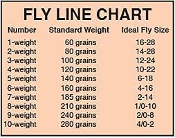 Choosing A Fly Line Pennsylvania Outdoor Journal