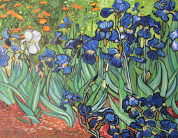 after van gogh irises full picture by fareed suheimat
