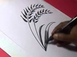 rice plant drawing. Fine Plant How To Draw RICE SEEDS DRAWING For Kids Step By On Rice Plant Drawing