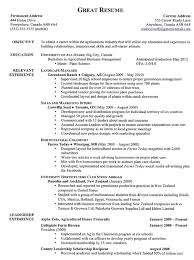 Successful Resume Examples 100 Images Best 25 Good Resume