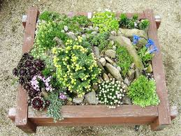 Small Picture 10 best rock garden ideas images on Pinterest Garden ideas