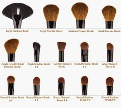 makeup brushes uses. makeup brushes and their uses o
