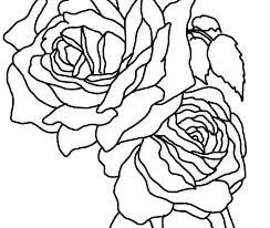 Coloring Sheet Rose Flowers And Hearts Coloring Pages Rose Heart Of