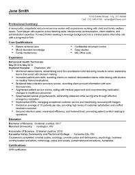Dorable City Planner Resume Adornment Documentation Template