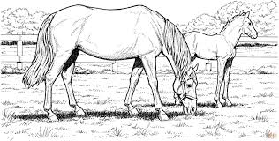 Small Picture Printable 30 Free Printable Realistic Horse Coloring Pages 3801