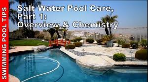Salt Water Pool Care Part One Overview Chemistry