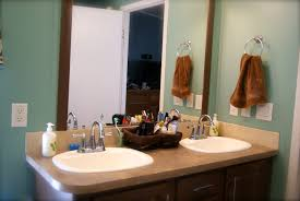 Bathroom Counter Organization Ideas Bathroom Counter Organization