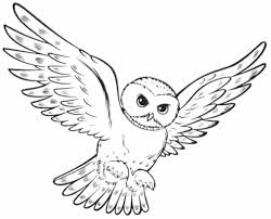 Small Picture Page Owl Coloring Pages Getcoloringpagescom Barn Barn Owl Coloring