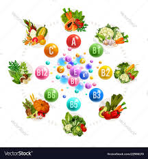 Nutrition Of Vitamins And Minerals