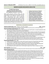 Hr Director Resume Hr Director Resume Examples Executive Sample In India Format Pdf 23