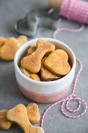 us pups love these healthy frozen homemade pumpkin dog treats my lady says they are easy to make