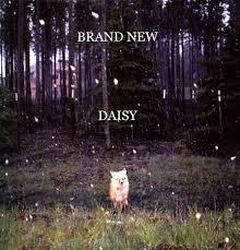 brand new daisy wallpaper