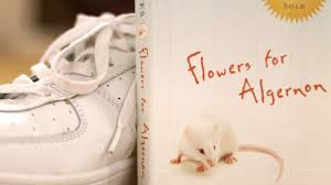flowers for algernon by daniel keyes book summary and review flowers for algernon by daniel keyes book summary and review minute book report