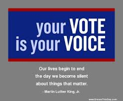 Voting Quotes Extraordinary Daily Inspiration Daily Quotes Your Vote Is Your Voice