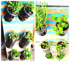 Indoor Kitchen Gardens And The Whole Garden Is Indoor Vegetable Gardening Fantastic Herb