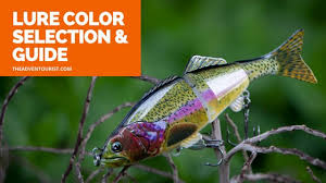 Fishing Lure Color Selection A Detailed Guide The
