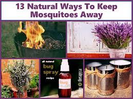 Mosquitoes Away