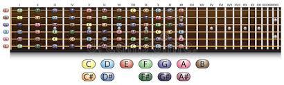 Guitar Fretboard Chart Guitar Fretboard Chart Stock Vector Illustration Of Music