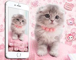Kucing 3d - 1375x1080 - Download HD ...