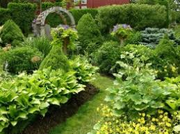 Small Picture Books Garden Design