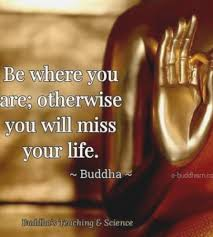 Buddha Quotes On Death Best Best Persnickety Buddha Quotes On Peace Vrpe